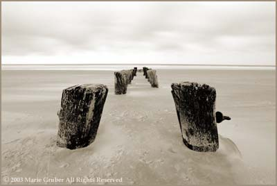 Folly Beach pilings 1